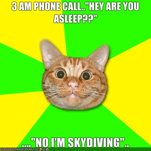No I'm Skydiving