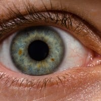 Human_eye_with_blood_vessels